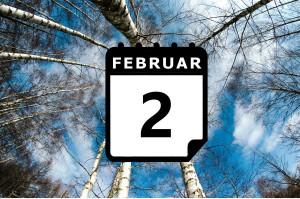 ¿Dónde hace calor en Febrero? - Preestreno