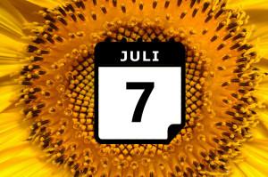¿Dónde hace calor en Julio? - Preestreno