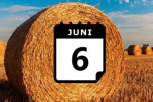 ¿Dónde hace calor en Junio? - Preestreno